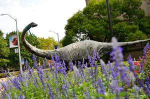 Dippy-the-Dinosaur