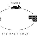 A Habit Loop